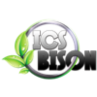 ICS ICE SPRAY